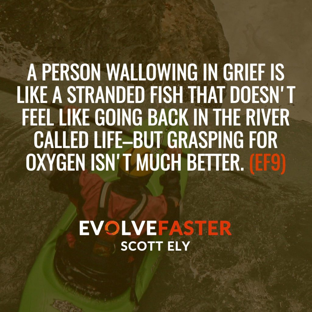 (EF9) S1-E7: I Feel Therefore I am Capsized on the River Emotion The Evolve Faster Podcast with Scott Ely Season One